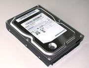 Жесткий диск Samsung HD161HJ