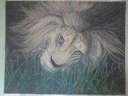 Картина пастелью Лев
