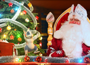 Подарите вашему ребенку новогоднее чудо!